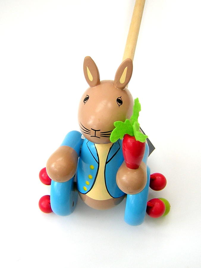 Wooden Push-Along Toy