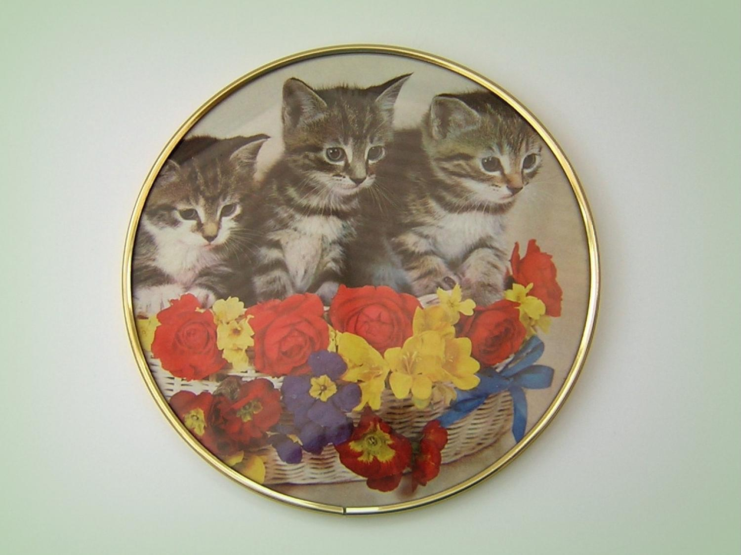 Vintage Kittens Wall Plaque