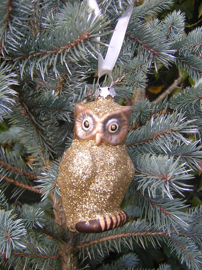 Glittery Owl Tree Decoration