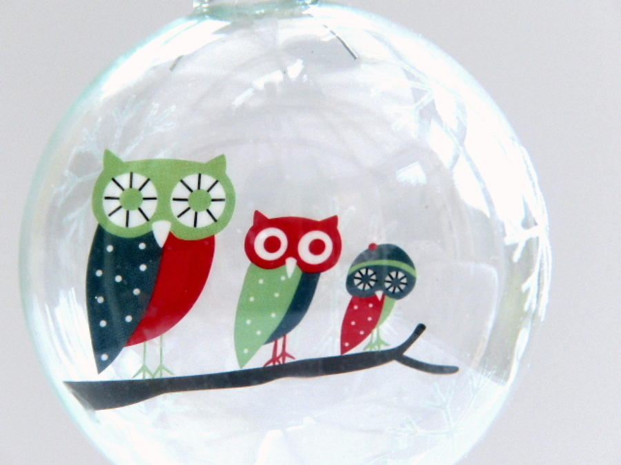 Frosty Owls Glass Bauble