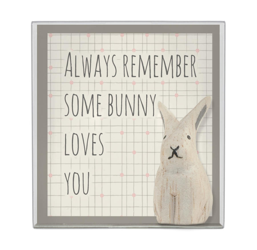 Some Bunny Loves You Keepsake