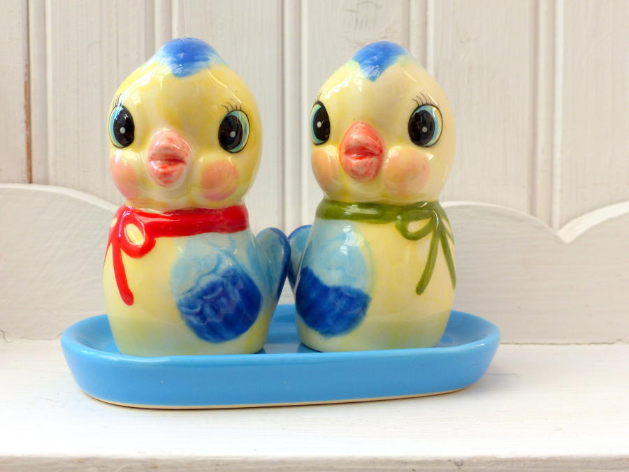 Bluebird Salt and Pepper Cruet