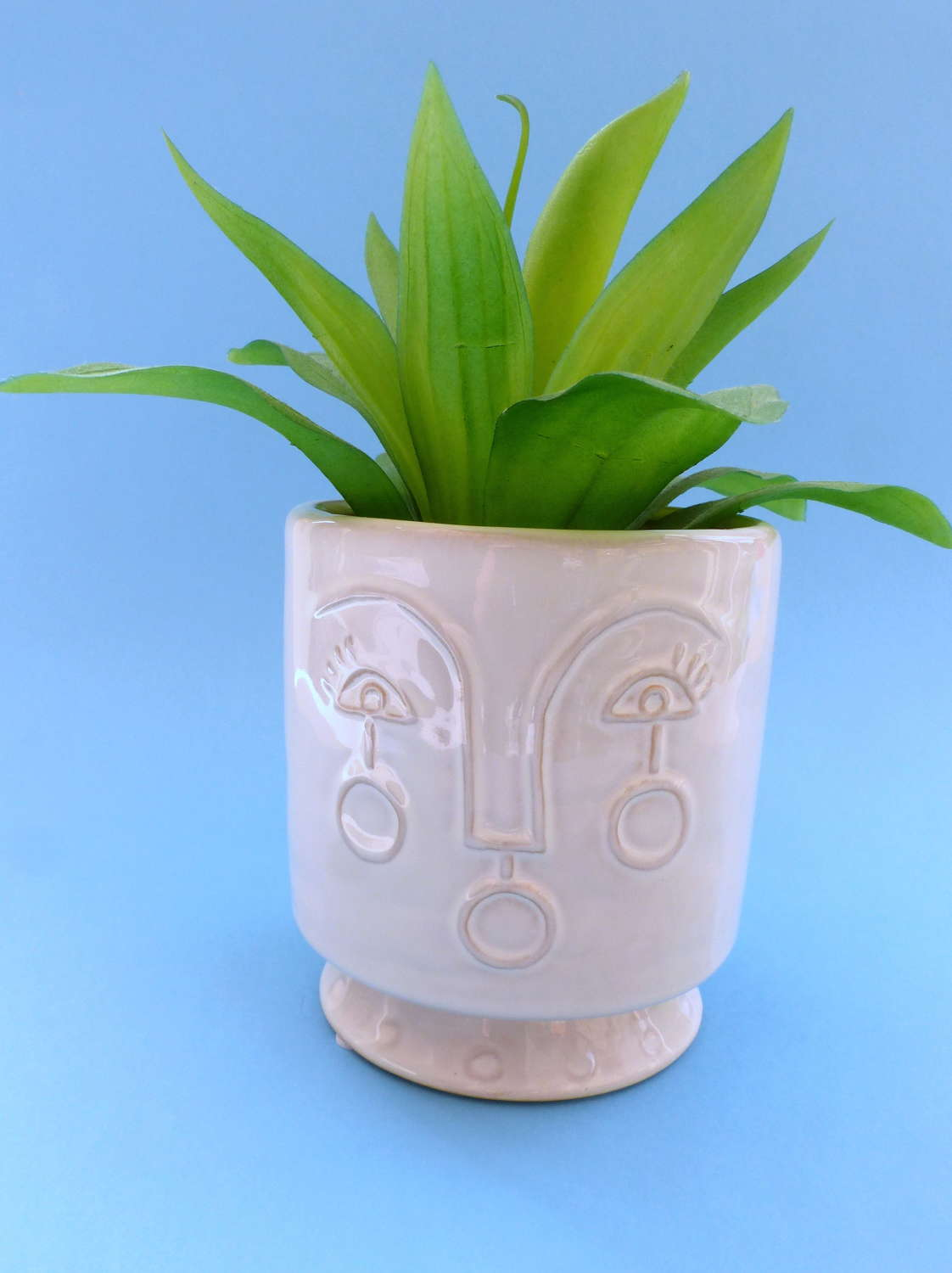 Gisela Graham Abstract Face Plant Pot Cover
